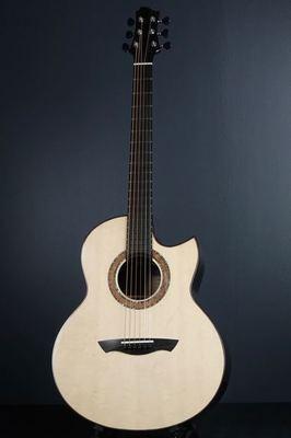 Akira Acoustic A3 cutaway custom500.jpg